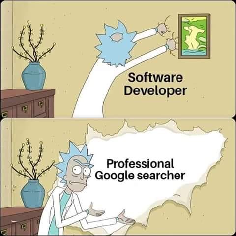 software developer vs professional google searcher